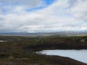 Bukvassfjellet und Urrdalsfjellet am Horizont